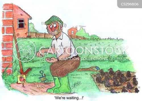 planting seeds cartoon
