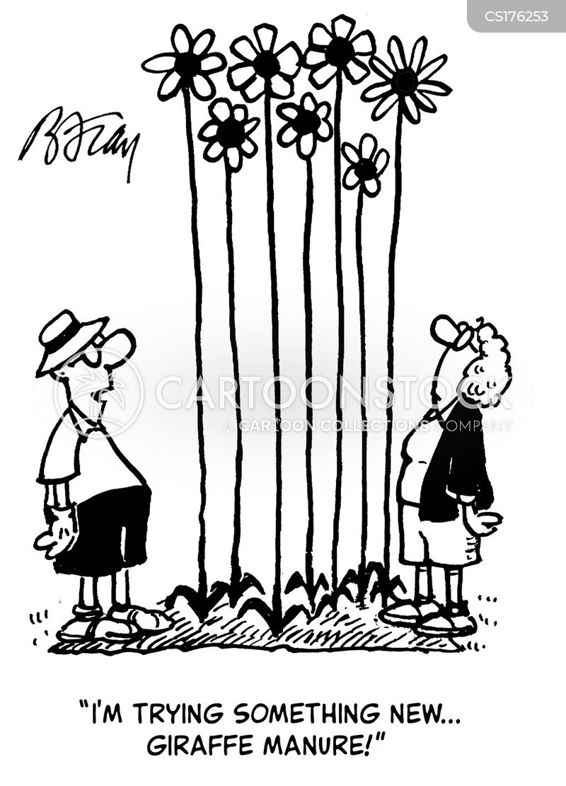 growing flowers cartoon