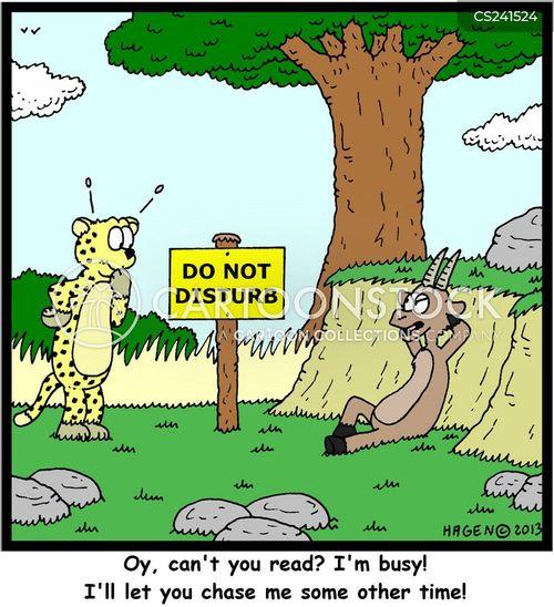 do not disturb cartoon