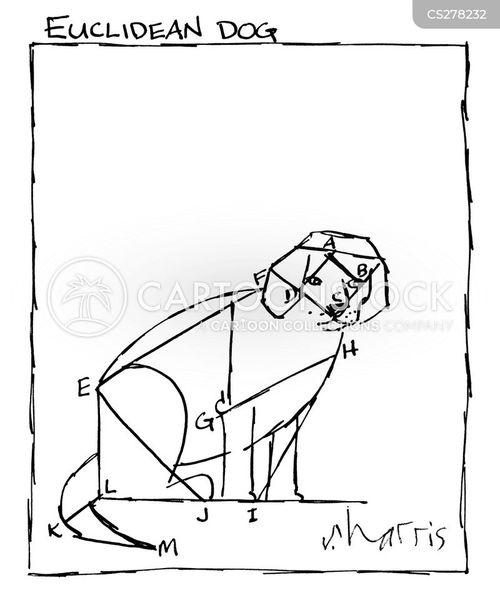 euclidean cartoon