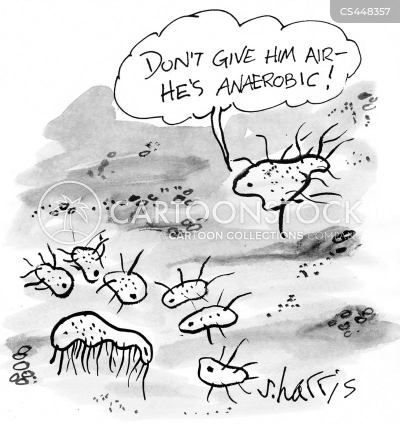 yeast cells cartoon