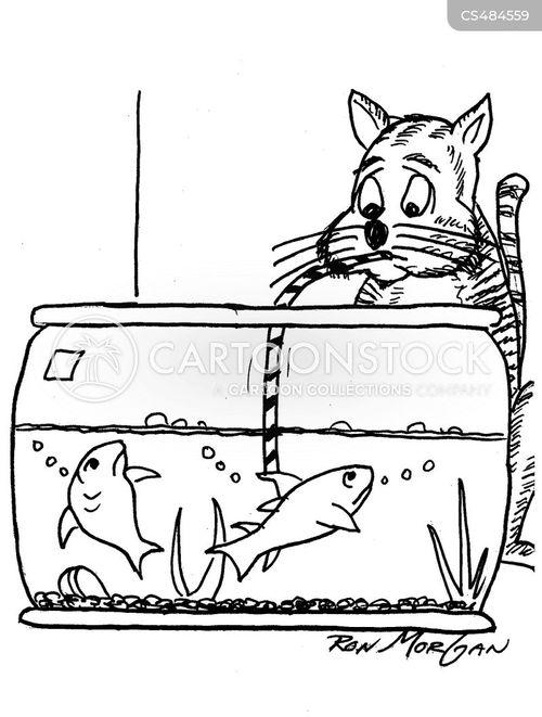fish-bowls cartoon