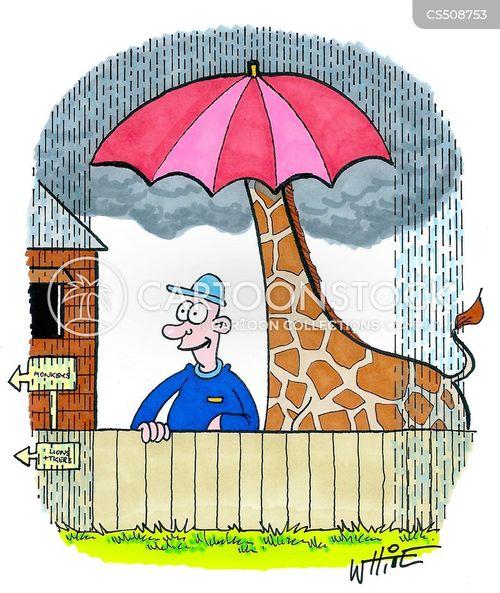 cloudburst cartoon