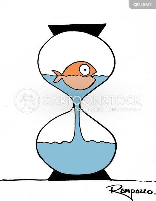 egg timers cartoon