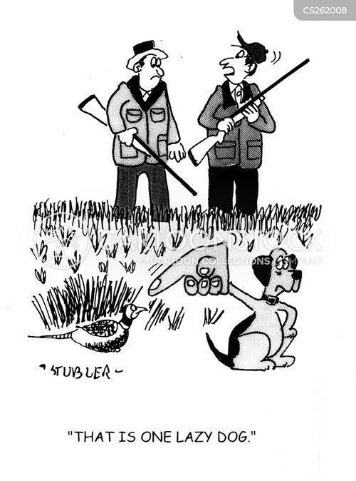 bird shooting cartoon