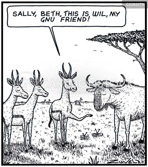 new friends cartoon