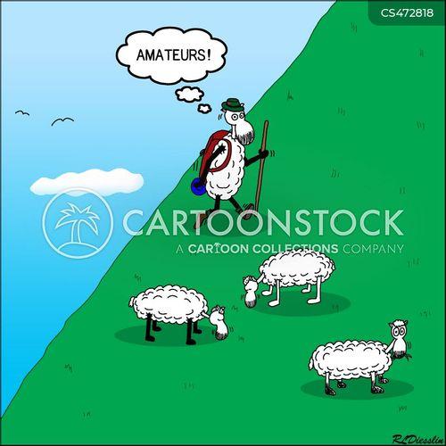 sheep breeds cartoon
