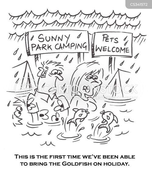 camping site cartoon