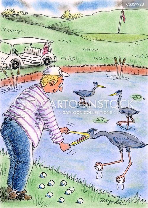 birds receiving golf balls cartoon