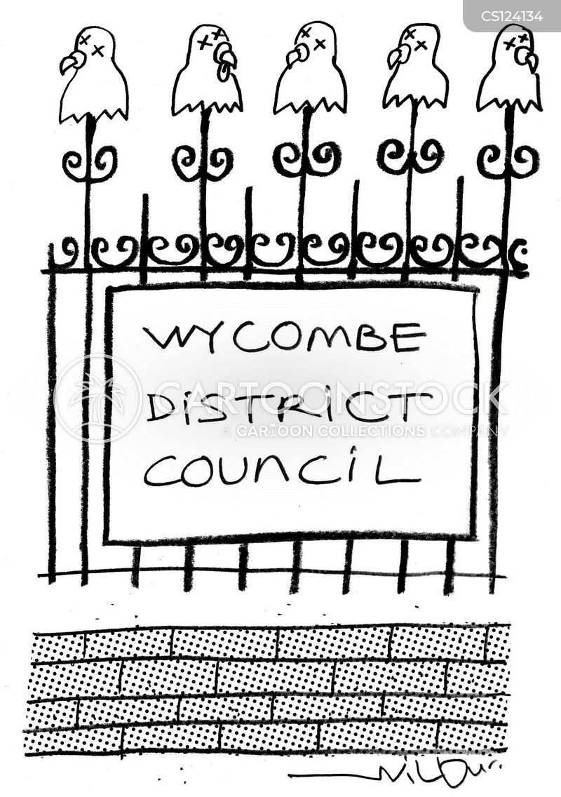 county councils cartoon