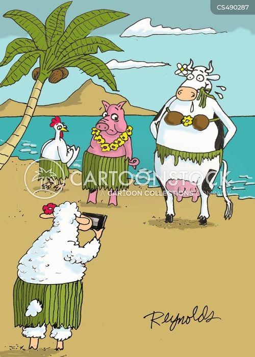 dairy animals cartoon
