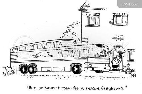 greyhound buses cartoon