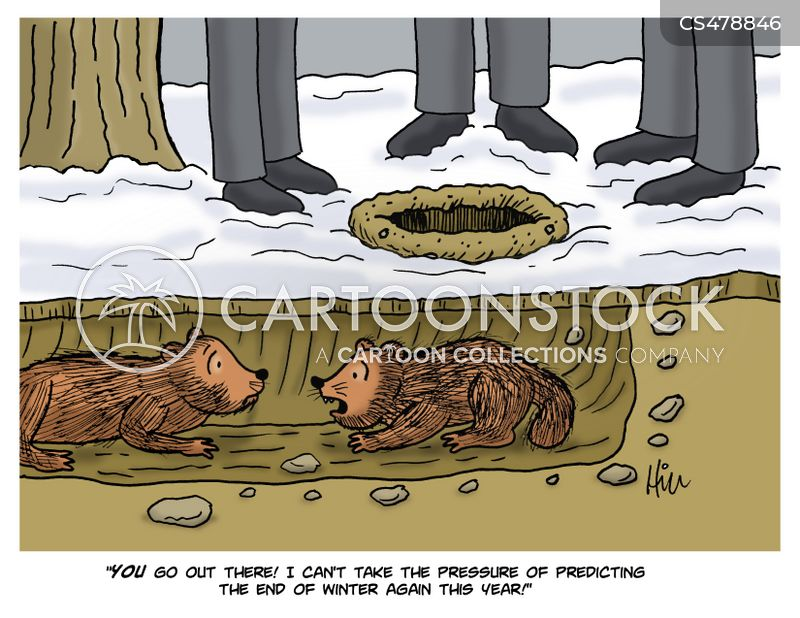 punxsutawney phil cartoon