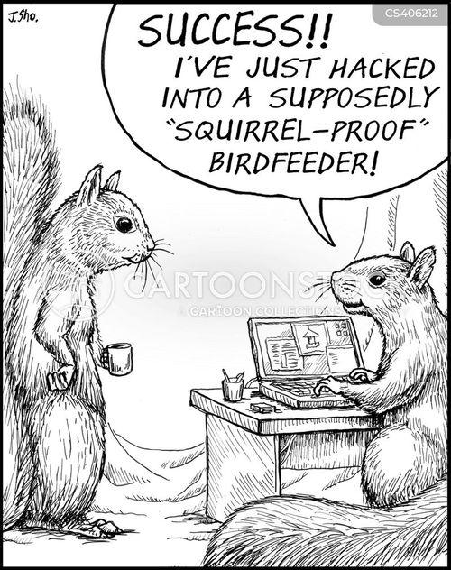 birdfeeder cartoon