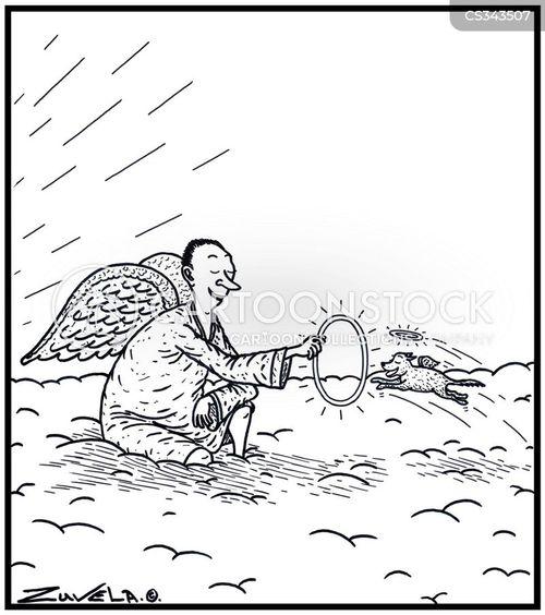 his cartoon