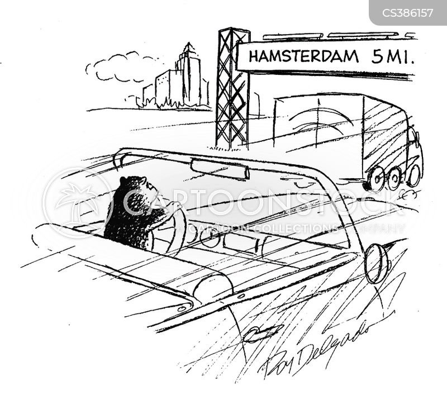 amsterdam cartoon