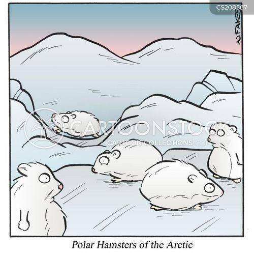 natural habitats cartoon