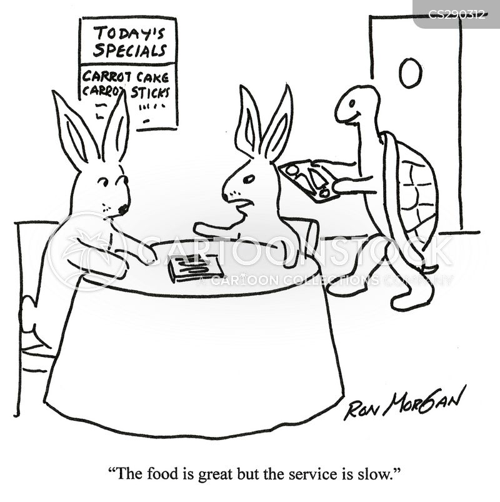 tortoise and hare cartoon