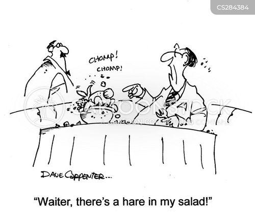 rabbit food cartoon