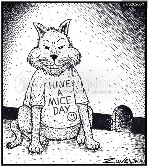 cats vs mice cartoon