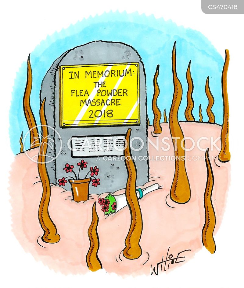 in memorium cartoon