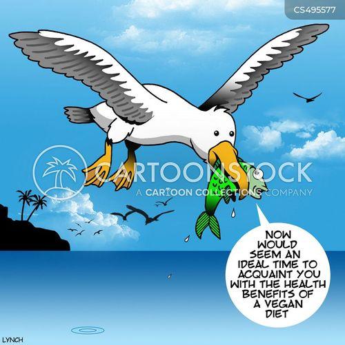 vegan diet cartoon