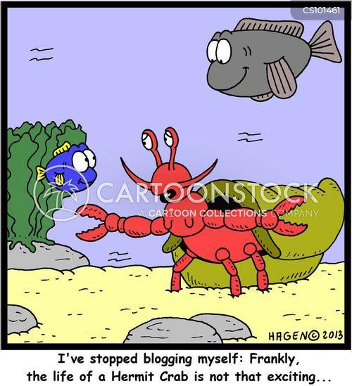 hermit crabs cartoon