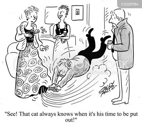 put the cat out cartoon