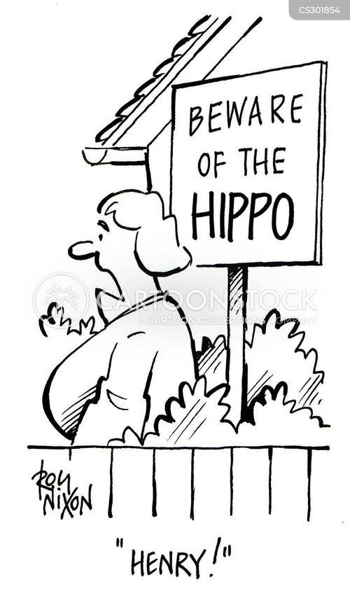 water horse cartoon