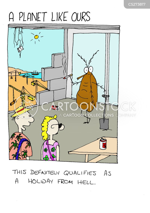 fly on the wall cartoon