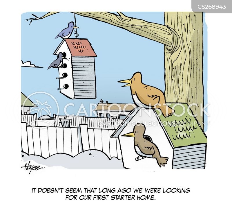 Bird Life cartoons, Bird Life cartoon, funny, Bird Life picture, Bird Life pictures, Bird Life image, Bird Life images, Bird Life illustration, Bird Life illustrations