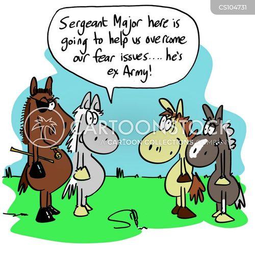 equines cartoon
