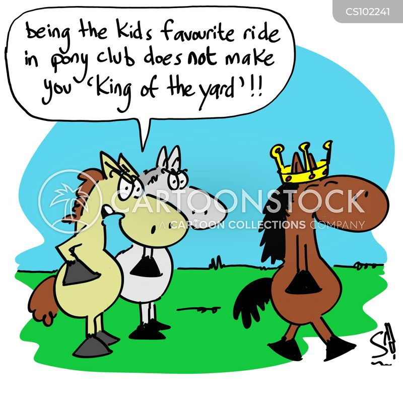 equine cartoon