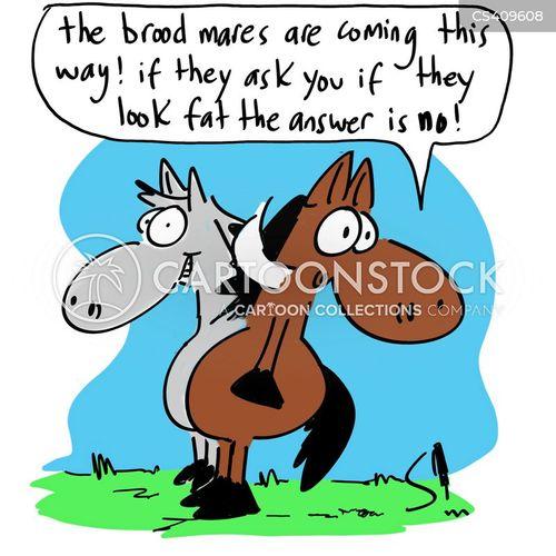 horse-riding cartoon