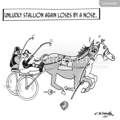 race horse cartoon