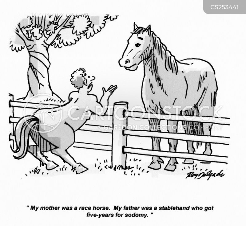racehorses cartoon
