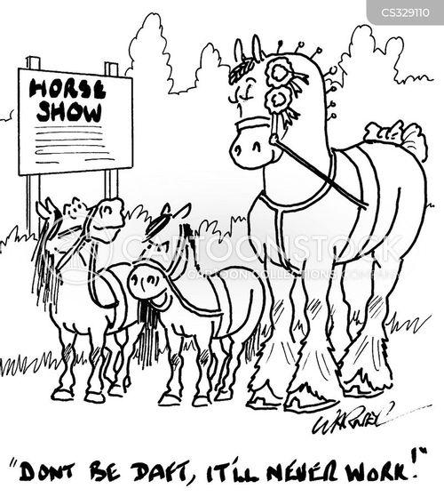 horse shows cartoon