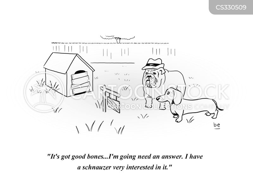 reatlor cartoon