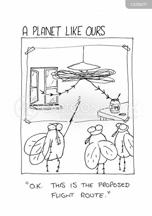 flied cartoon