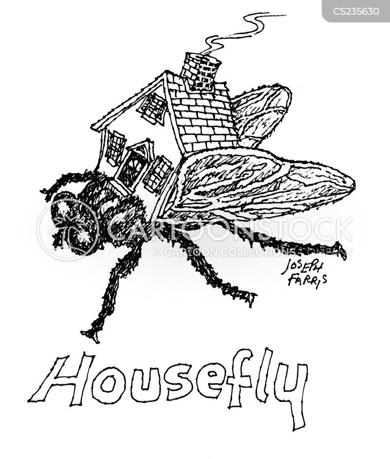 House Fly cartoons, House Fly cartoon, funny, House Fly picture, House Fly pictures, House Fly image, House Fly images, House Fly illustration, House Fly illustrations