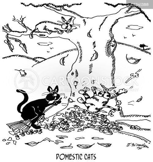 domestic cat cartoon