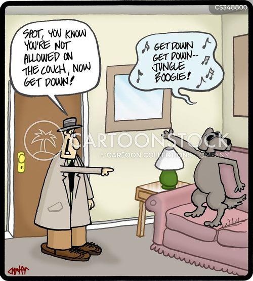 house-trained cartoon
