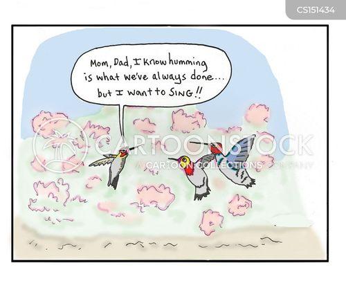 hummingbirds cartoon