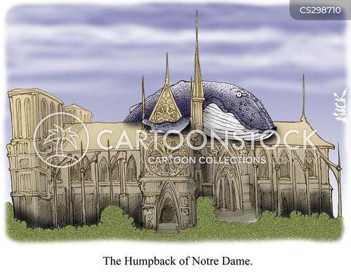 humpbacks cartoon