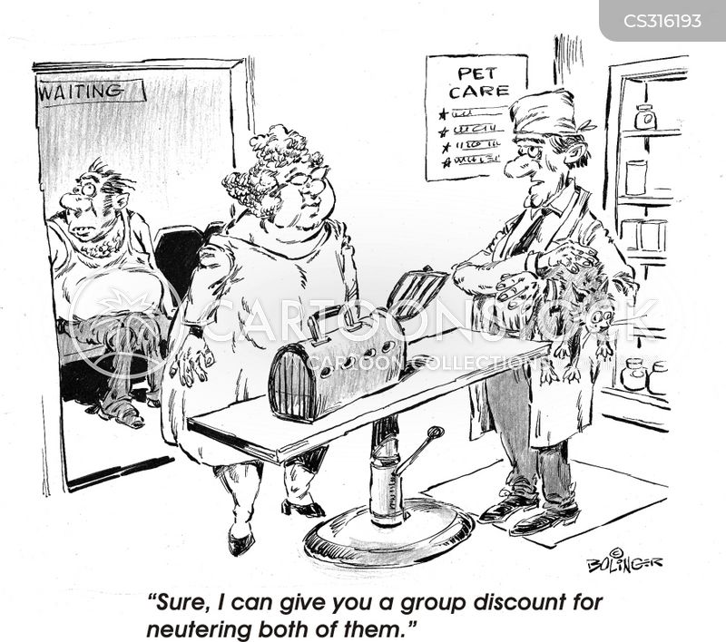 veteranarians cartoon
