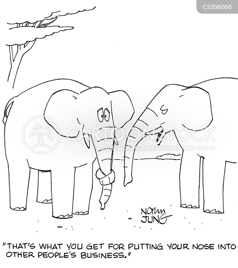 Inquisitive Cartoons and Comics - funny pictures from