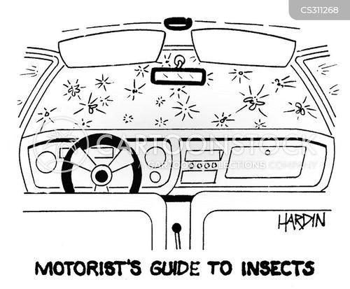 car owner cartoon