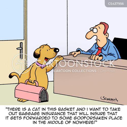 baggage insurance cartoon