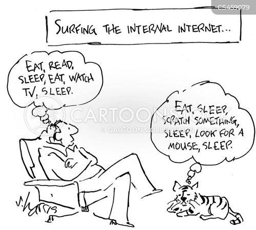 internal internet cartoon