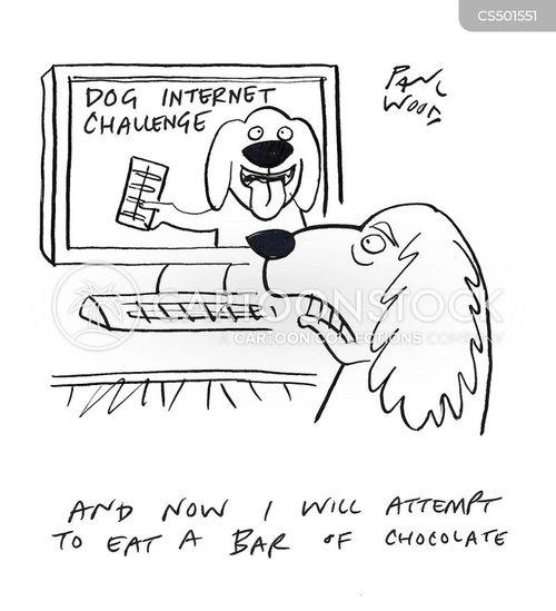internet challenge cartoon